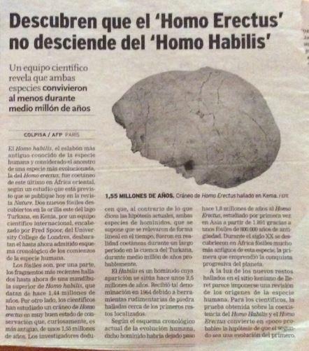 erectus-habilis