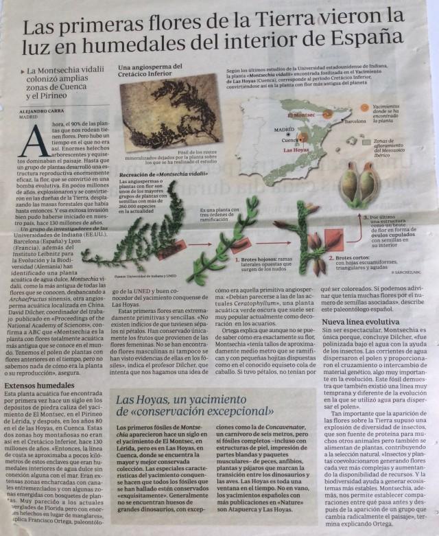 La primera flora terrestre
