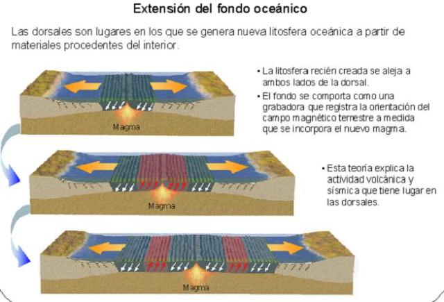 Expansión de fondos oceánicos